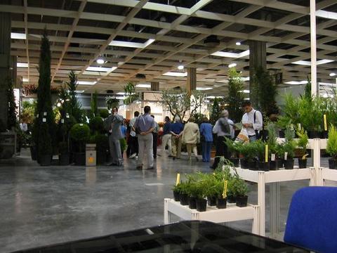 Viveros Belverde -  FERIAS Y EXPOSICIONES - Viveros Belverde, S.L. - Viveros productores de planta joven de conifera del norte de Espa�a.